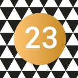 Case n°23